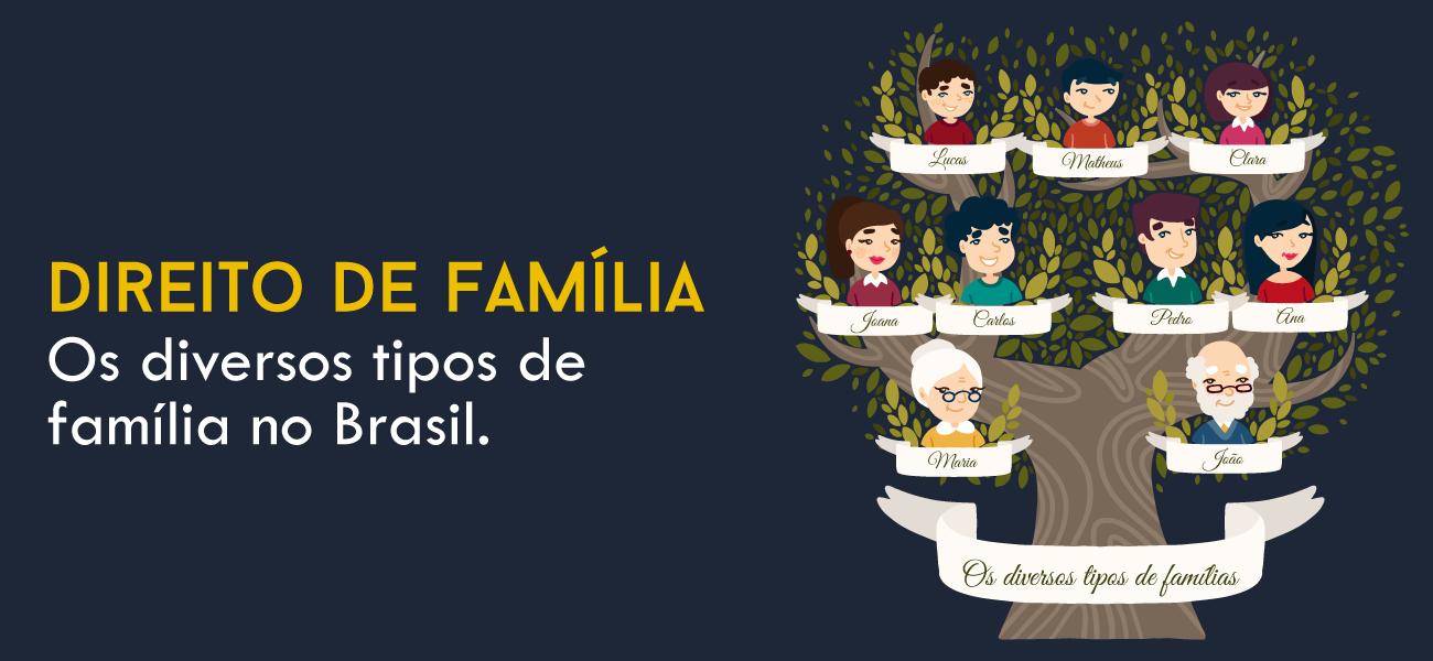 Quantos tipos de família existem reconhecidamente no Brasil?